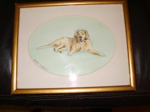 Golden Retriever, Water Colour Paintin